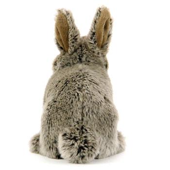 ニホンノウサギの画像 p1_14