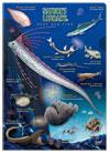 クリアケース A4 深海魚