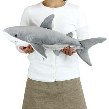 ホホジロザメの画像 p1_32