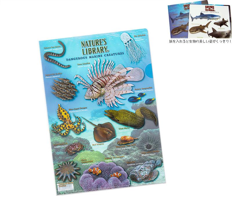クリアケース 海の危険生物