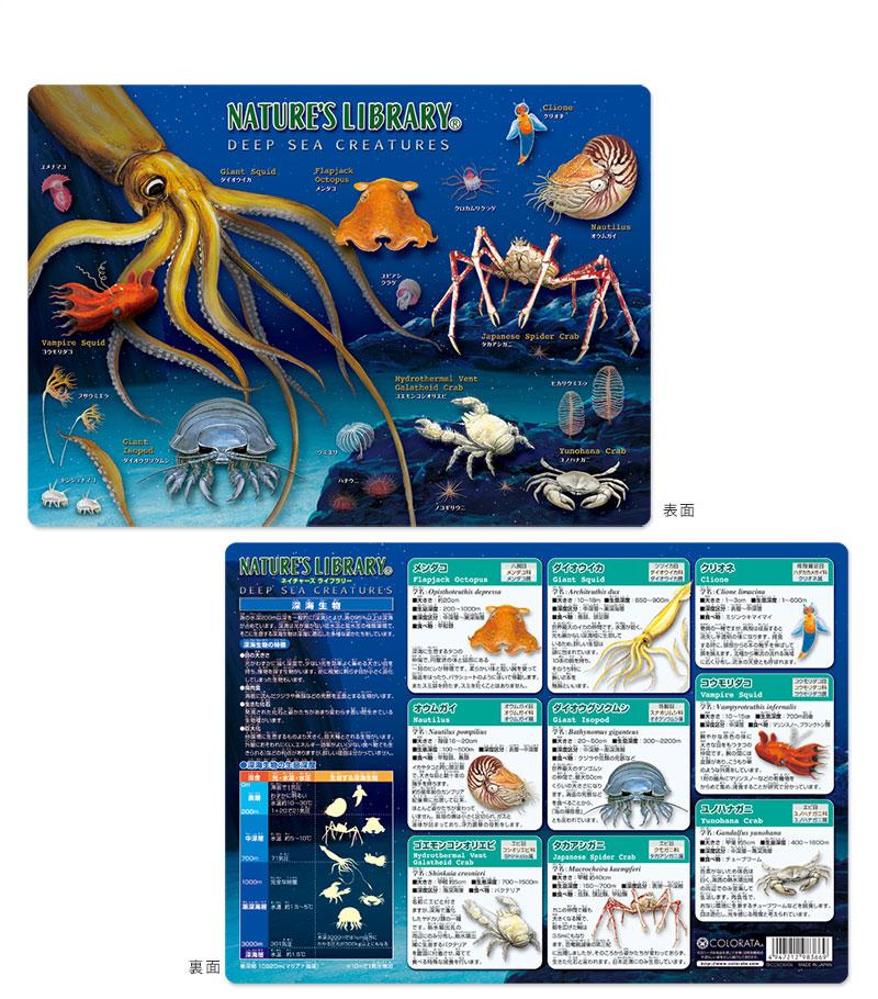 アニマルガイドシート(下敷き) 深海生物