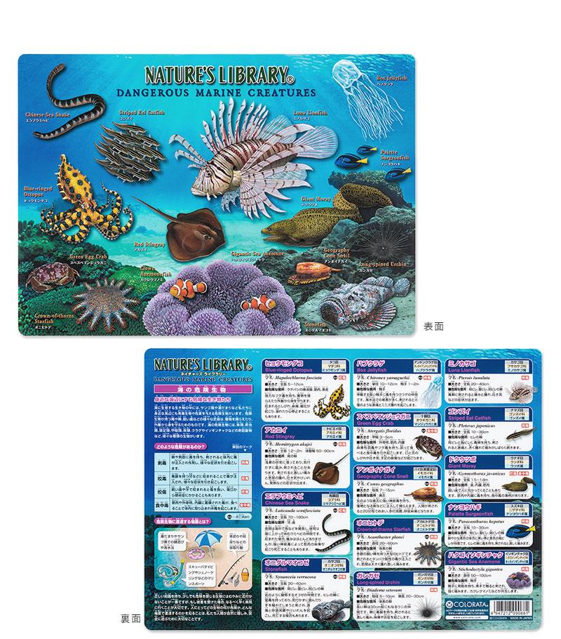 アニマルガイドシート(下敷き) 海の危険生物