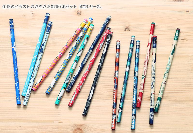 生物のイラストのかきかた鉛筆 3本セット B芯シリーズ