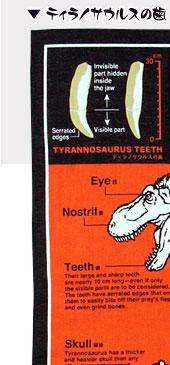 ティラノサウルスの歯
