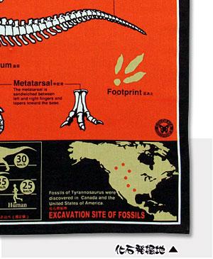 化石発掘地