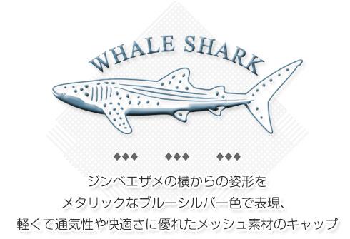 ジンベエザメの横からの姿形をメタリックなブルーシルバー色で表現