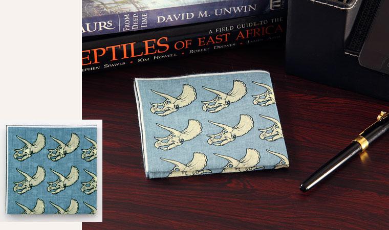 標本ボックス ガーゼハンカチ トリケラトプス デスク イメージ