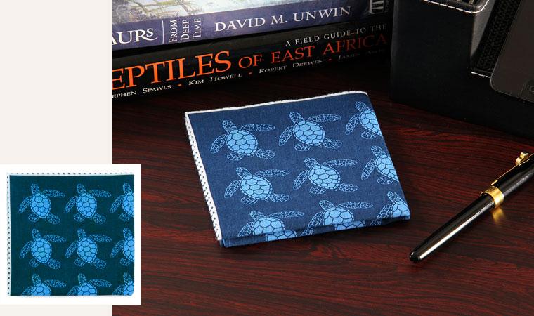 標本ボックス ガーゼハンカチ アオウミガメ デスク イメージ