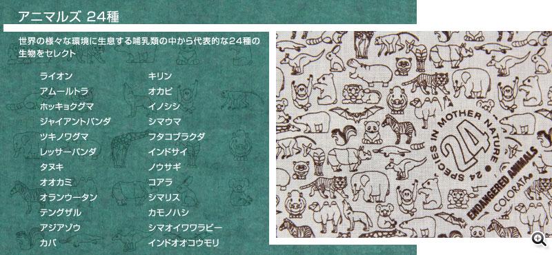 特徴のある哺乳類24種