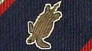 生物・動物・アニマル柄ネクタイ アオウミガメ ストライプ モチーフ