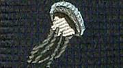 生物・動物・アニマル柄ネクタイ タコクラゲ 小紋 モチーフ