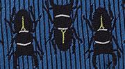 生物・動物・アニマル柄ネクタイ オウムガイ 小紋 モチーフ