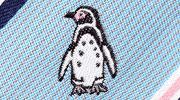 生物・動物・アニマル柄ネクタイ フンボルトペンギン モチーフ