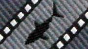 生物・動物・アニマル柄ネクタイ ホホジロザメ ストライプ モチーフ