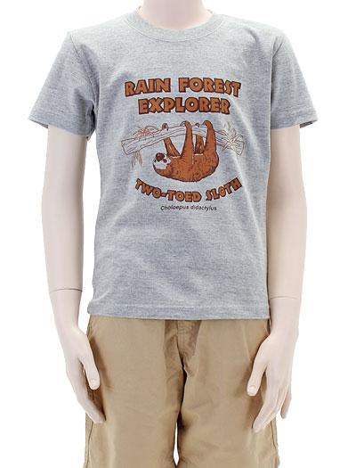 ミュージアムデザイン Tシャツ フタユビナマケモノ グレー 130サイズ 着用イメージ