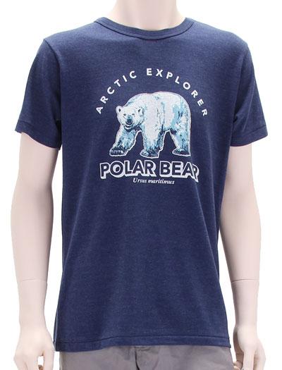 ミュージアムデザイン Tシャツ ホッキョクグマ ネイビー Mサイズ 着用イメージ