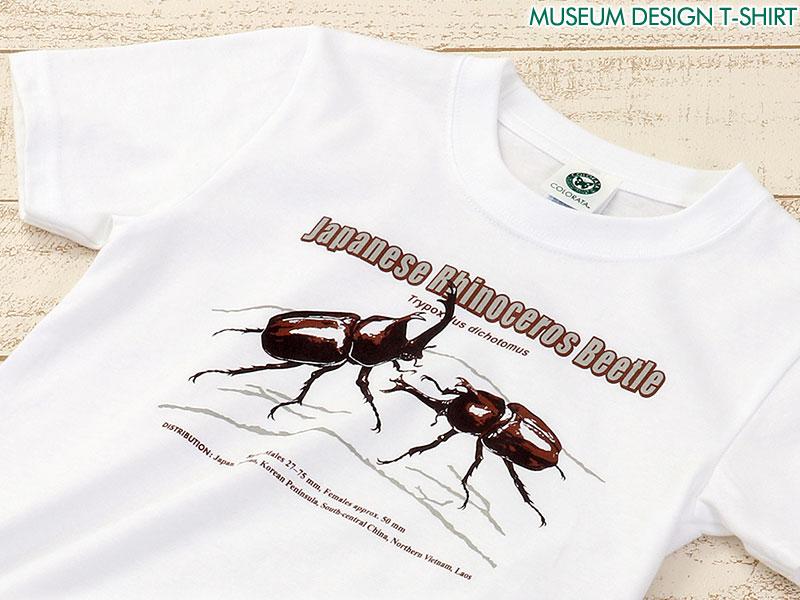 ミュージアムデザイン Tシャツ カブトムシ(日本) ホワイト 子供サイズ