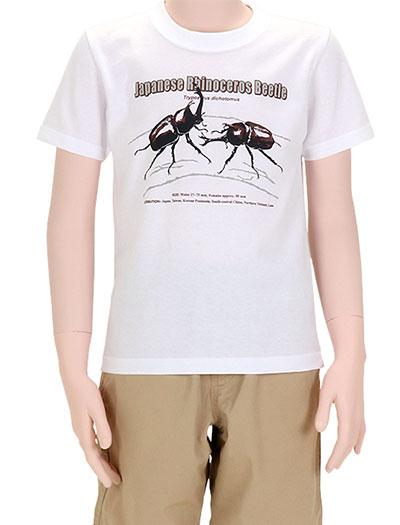 ミュージアムデザイン Tシャツ カブトムシ(日本) ホワイト 130サイズ 着用イメージ
