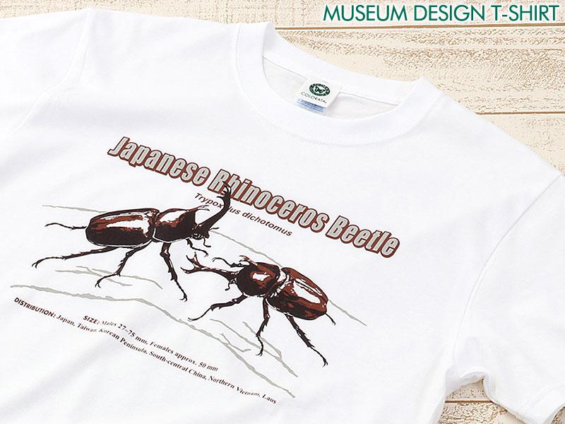 ミュージアムデザイン Tシャツ カブトムシ(日本) ホワイト S/M/Lサイズ