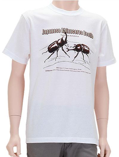 ミュージアムデザイン Tシャツ カブトムシ(日本) ホワイト Mサイズ 着用イメージ
