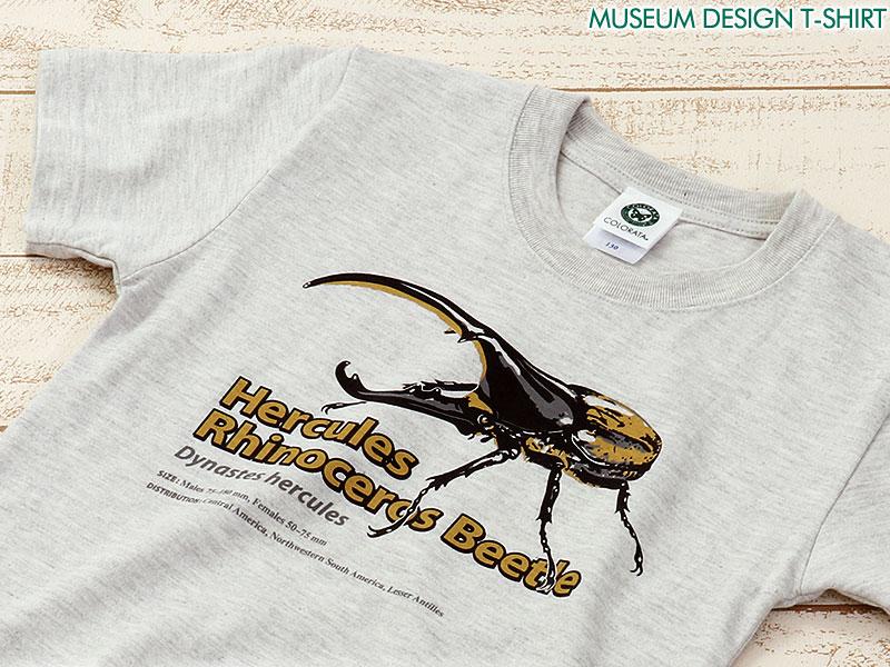 ミュージアムデザイン Tシャツ ヘラクレスオオカブト ライトグレー 子供サイズ