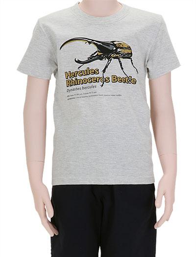 ミュージアムデザイン Tシャツ ヘラクレスオオカブト ライトグレー 130サイズ 着用イメージ