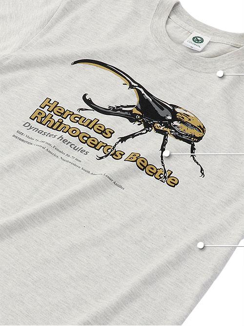 ミュージアム デザイン Tシャツ 大人サイズ 素材