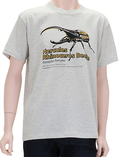 ミュージアムデザイン Tシャツ ヘラクレスオオカブト ライトグレー Mサイズ 着用イメージ