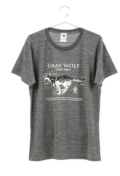 サイエンスデザイン Tシャツ タイリクオオカミ グレー Mサイズ