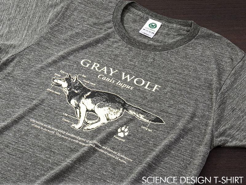 サイエンスデザイン Tシャツ タイリクオオカミ グレー M/Lサイズ