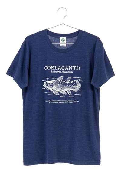 サイエンスデザイン Tシャツ シーラカンス ネイビー Lサイズ