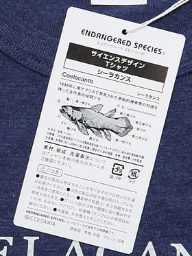 タグ裏生物情報