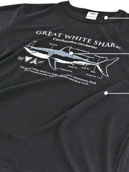 サイエンスデザイン Tシャツ M/Lサイズ 素材