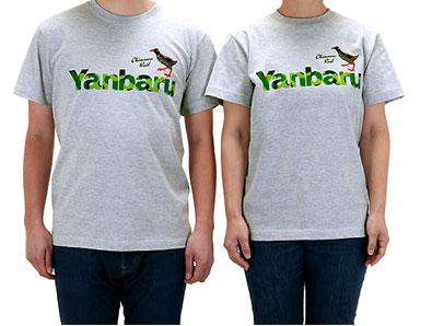 やんばる Tシャツ ヤンバルクイナ グレー 左男性Mサイズ、右女性Sサイズ