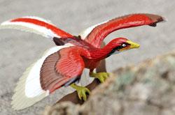 立体図鑑 ディノボックスVOL.2 アーケオプテリクス(始祖鳥)