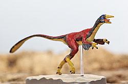 立体図鑑  羽毛恐竜プレミアムボックス シノサウロプテリクス