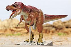 立体図鑑  羽毛恐竜プレミアムボックス ティラノサウルス