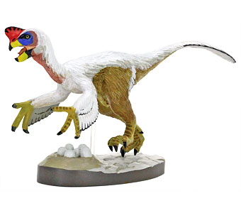立体図鑑羽毛恐竜プレミアムボックス オヴィラプトル フィギュア
