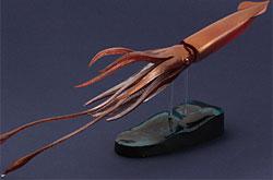 立体図鑑  深海生物プレミアムボックス  ダイオウイカ