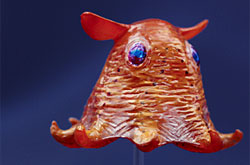 立体図鑑  深海生物プレミアムボックス メンダコ