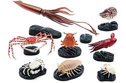 立体図鑑  深海生物プレミアムボック