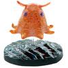 立体図鑑深海生物プレミアムボックス オオワシ フィギュア