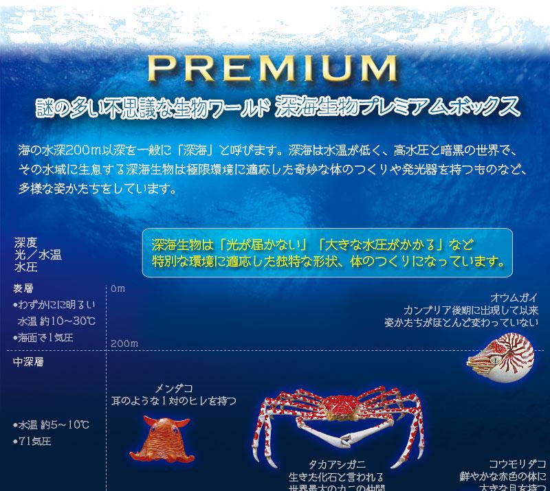 謎の多い不思議な生物ワールド 深海生物プレミアムボックス