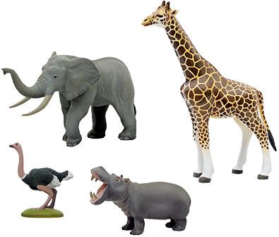 動物地理区 エチオピア区 代表的な動物のフィギュア