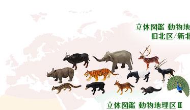 立体図鑑 動物地理区2 東洋区