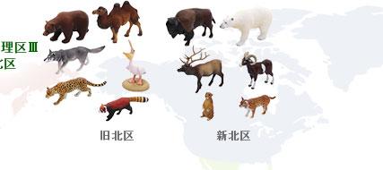 立体図鑑 動物地理区3 旧北区 新北区