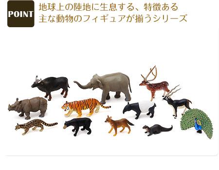 動物地理区シリーズ