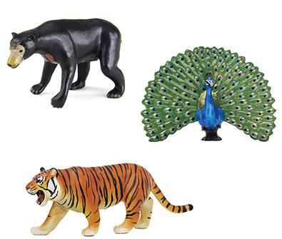 動物地理区 東洋区 代表的な動物のフィギュア