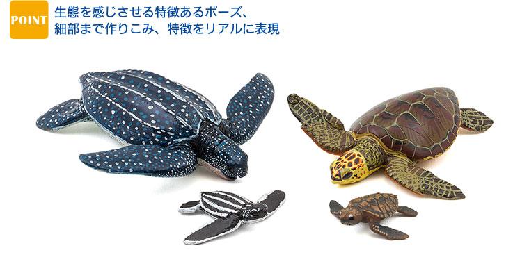リアル フィギュア 立体図鑑 ウミガメの親子ボックス