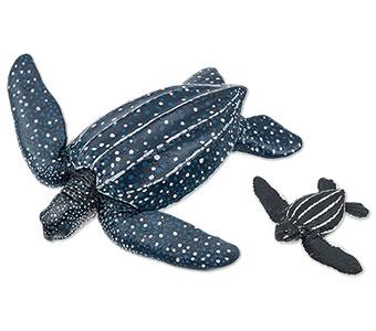 立体図鑑ウミガメの親子ボックス オサガメ フィギュア